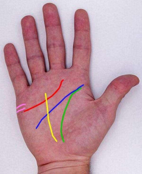 noticias cómo leer tus manos