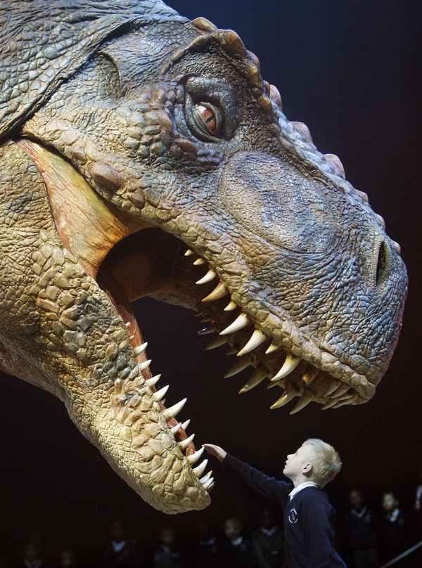 noticias el Tiranosaurio rex poseía el mordisco más potente de todos los tiempos